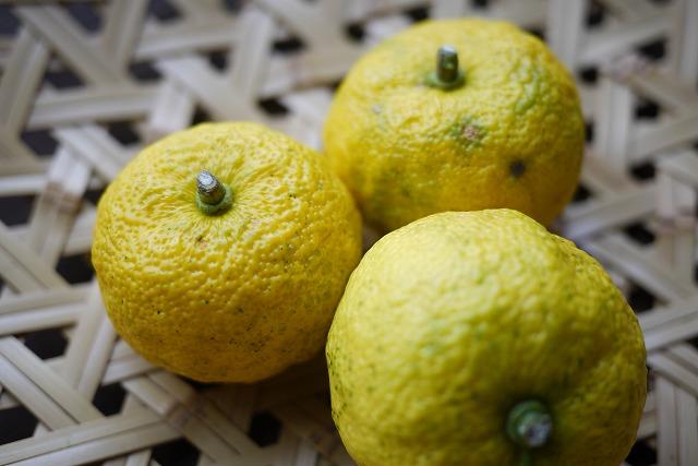 冬のドリンク「柚子茶」