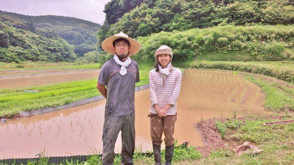 生きているお米の生産者